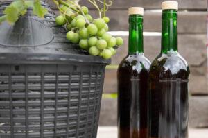 Przepis na wino z winogron Bimberek blog